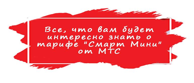 Смарт Мини